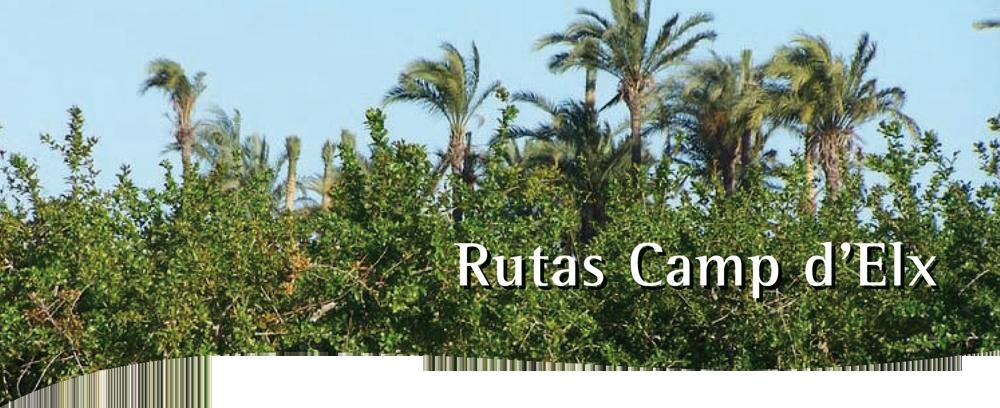 Imagen_Rutas